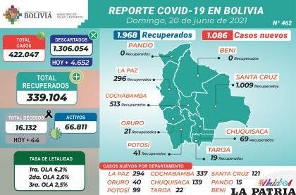 Bolivia superó los mil casos de Covid-19 /MINISTERIO DE SALUD