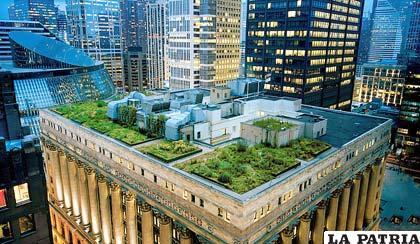 Techos Verdes Urbanos Para Reducir El Ruido Del Tr Fico