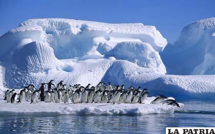 Un glaciar es una gruesa masa de hielos