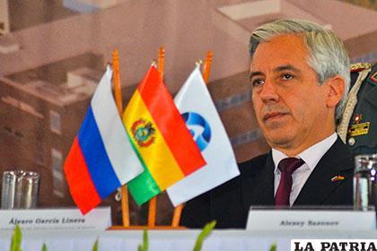 El vicepresidente Álvaro García Linera /APG