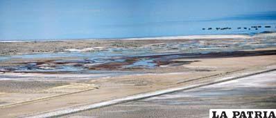 Pantano que recibe las aguas servidas de Oruro