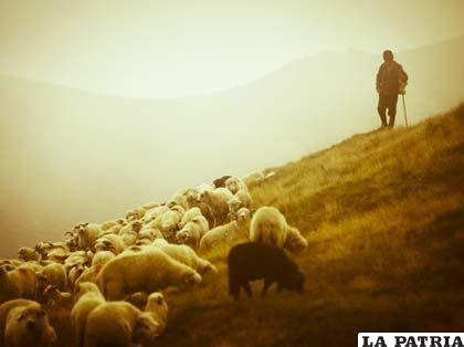 """Jesús es como nuestro pastor y nosotros su """"pequeño rebaño"""""""