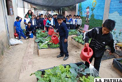 Niños aprenden a sembrar y cosechar /ABI