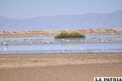 Además de la sequía, la contaminación es un tema preocupante para la población de El Choro
