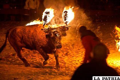 El fuego en los cuernos del toro no le permitió ver el poste con el que golpeó el toro