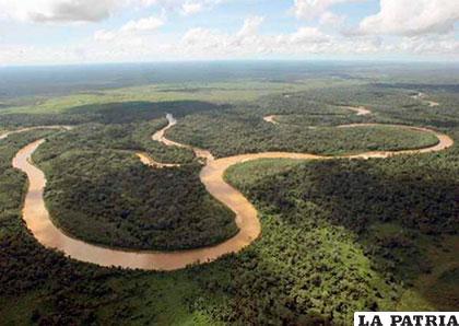 El Tipnis es un territorio conocido por las ONGs /Ilustrativa