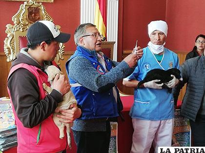 Personal del Sedes y Cemzor demostrando la forma correcta de aplicar la vacuna antirrábica /LA PATRIA