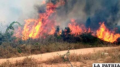 Los incendios que azotan la Amazonía brasileña, en Porto Velho, capital del estado amazónico de Rondonia /EFE