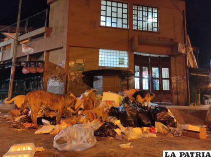 """La acumulación de basura en los centros de abasto es un """"dolor de cabeza"""" /LA PATRIA"""