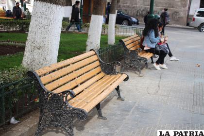 Los desechos de las palomas también representan un problema para la salud /LA PATRIA