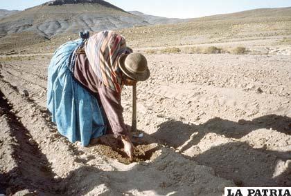 El analfabetismo en Bolivia sigue predominando entre la población femenina