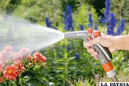 Las plantas necesitan cuidados en primavera - Plantas que aguantan temperaturas extremas ...