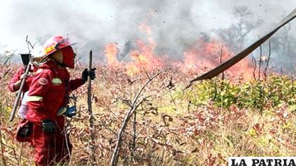 Incendios forestales en la Chiquitanía /ABI