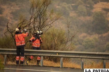 Bomberos trabajan en un incendio forestal en Estepona, España /Foto AP /Sergio Rodrigo