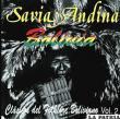 """""""Savia Andina"""", un grupo boliviano de larga trayectoria, cuya música está reconocida dentro los clásicos del folklore"""