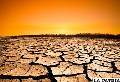 Esfuerzos para rebajar emisiones de metano deben ser
