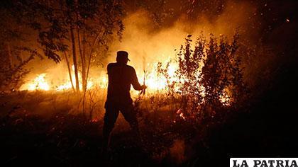 Incendios generados en ese país, son los peores desde 1977