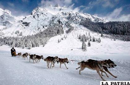 El segundo lugar es para el desierto ártico con una superficie de 13.726.937 kilómetros cuadrados