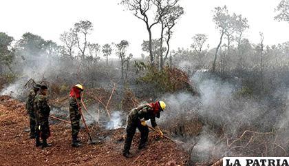 Presidente Morales asegura que ya no existen focos de calor en la Chiquitania /ATB