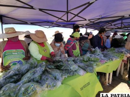 Productores orureños buscan promocionar su producción ecológica / LA PATRIA
