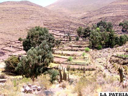 Pintoresco paisaje rural de la provincia Saucarí