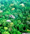 Cineastas recuerdan que el Amazonas  también sufre graves dramas sociales