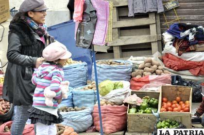 Precios de algunas verduras podrían mantenerse estables según comerciantes