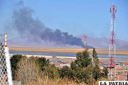 Buscan alternativas para frenar la quema de totora