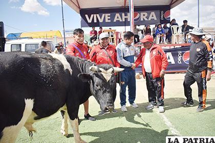 Los organizadores entregaron como premios, trofeos, medallas y un toro a cada equipo campeón /Reynaldo Bellota /LA PATRIA