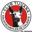 Tijuana el equipo sensación  debutará en Copa Libertadores