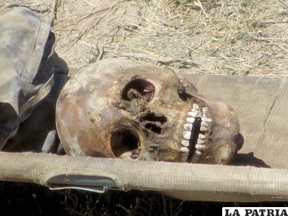El cráneo de la osamenta encontrada a un lado de la carretera a La Joya