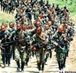 Se estima que las fuerzas paramilitares en Colombia llegaron a tener 8.000 miembros