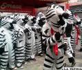 Cebras de La Paz /ANF