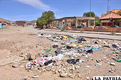 Bolsas plásticas tardan cientos de años en degradarse /LA PATRIA